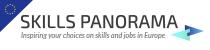 Skills panorama banner