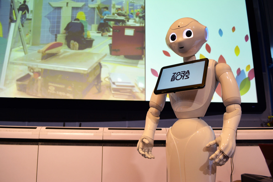 VET week 2017 Zora robots