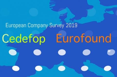 European company survey 2019