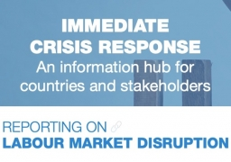Immediate crisis response - Reporting on labour market disruption